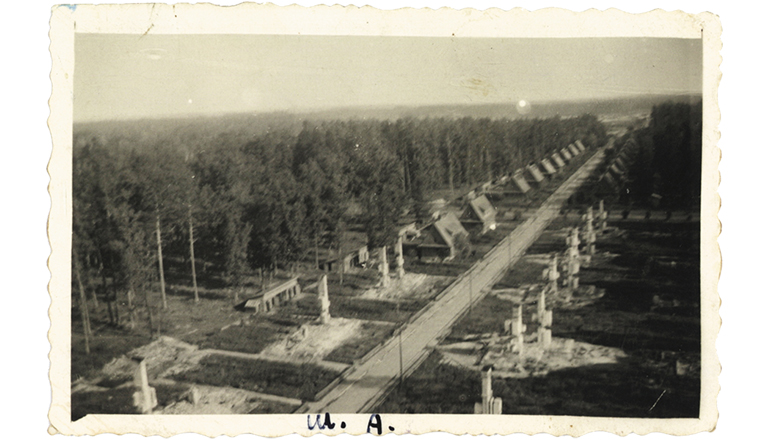 Janowa Dolina. Ruiny osiedla spalonego w1943 r.